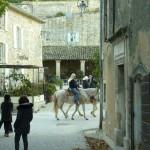 Cheval-dans-le-Luberon-01