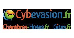 Cybevasion